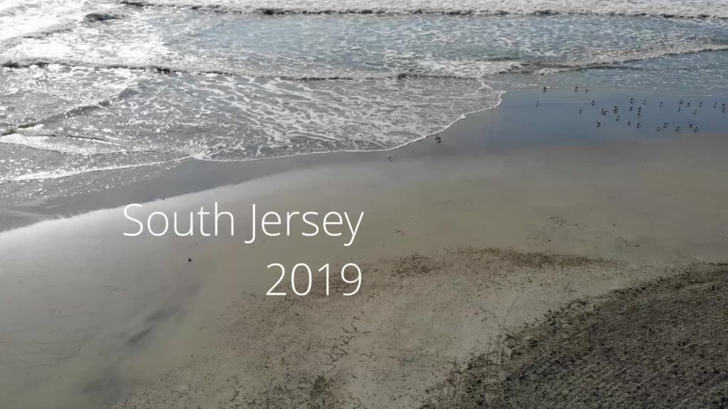 South Jersey 2019